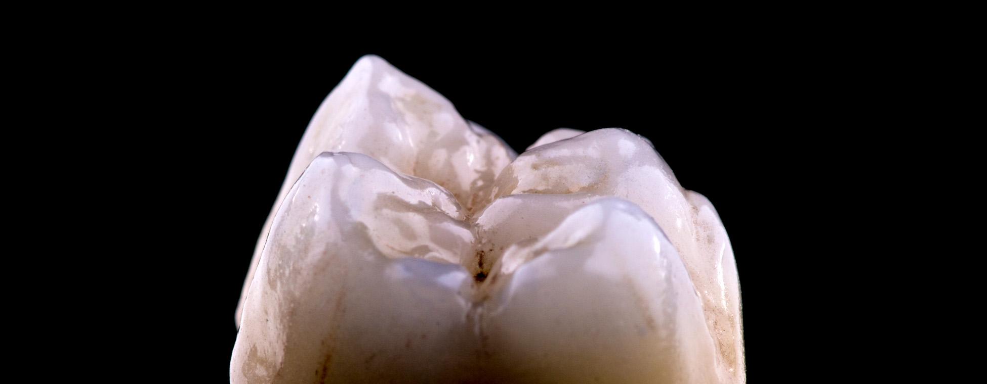 Clínica São Dente